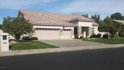 Mesa Single Family Home For Sale: 4050 E Encanto Street