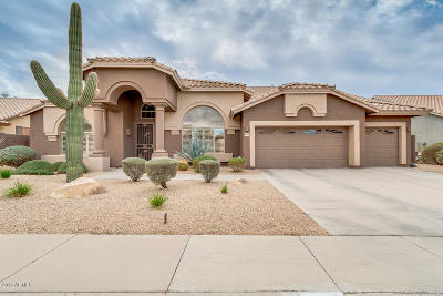 Cave Creek Single Family Home For Sale: 5029 E Barwick Drive