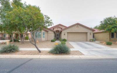 Casa Grande Single Family Home For Sale: 2455 E Durango Drive
