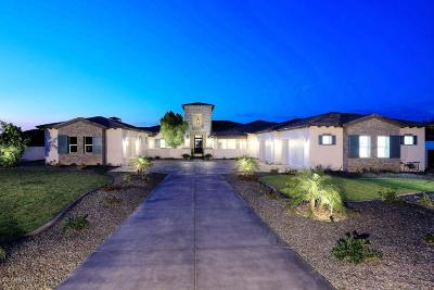 Peoria Single Family Home For Sale: 9520 W Bellissimo Lane