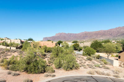 Gold Canyon Residential Lots & Land For Sale: 9960 E Fools Gold Place
