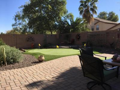 San Tan Valley Single Family Home For Sale: 757 E Beargrass Place E
