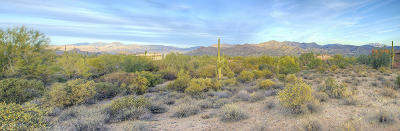 Rio Verde Residential Lots & Land For Sale: 307xx N 174th Street