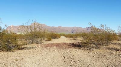 Apache Junction Residential Lots & Land For Sale: 2550 E Southern Avenue