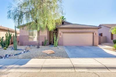 Single Family Home For Sale: 1721 W Deer Creek Road