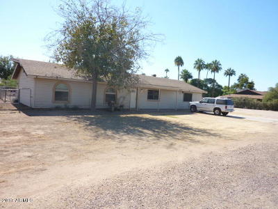 Chandler Single Family Home For Sale: 373 E Tremaine Drive