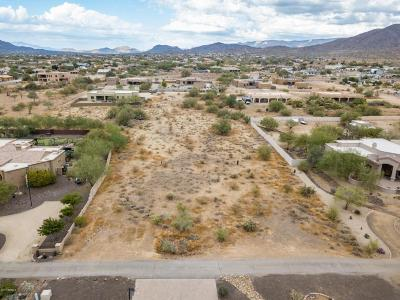 Single Family Home For Sale: 9xx E Desert Hills Estate Drive