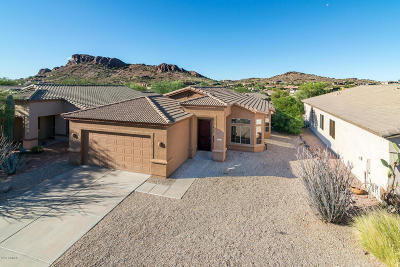 Gold Canyon East Single Family Home For Sale: 4300 S Pony Rider Trail