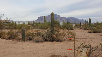 Apache Junction Residential Lots & Land For Sale: N Main Drive