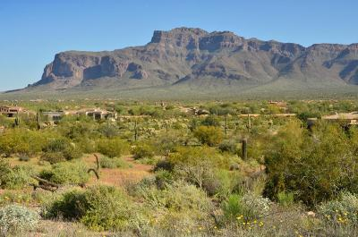 El Mirador At Superstition Mountain, El Mirador Superstition Mountain Residential Lots & Land For Sale: 6616 E Old Camp Road