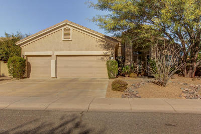 Cave Creek Single Family Home For Sale: 29255 N 49th Street