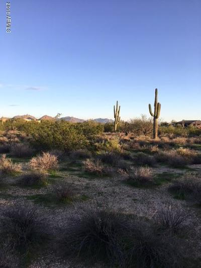 Scottsdale Residential Lots & Land For Sale: 29430 N 76th Street
