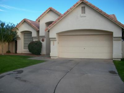 Chandler Single Family Home For Sale: 2080 W Boulder Court