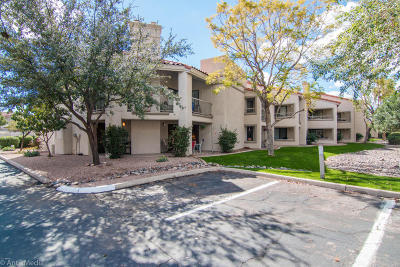 Scottsdale Apartment For Sale: 9450 N 94th Place #202