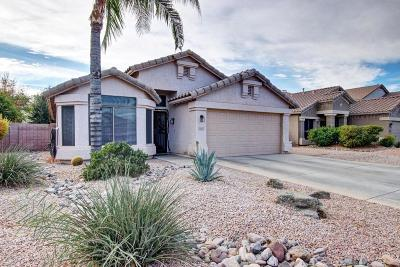 Gilbert Single Family Home For Sale: 3963 E Page Avenue