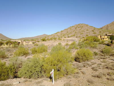 Scottsdale Residential Lots & Land For Sale: 13016 E Summit Drive