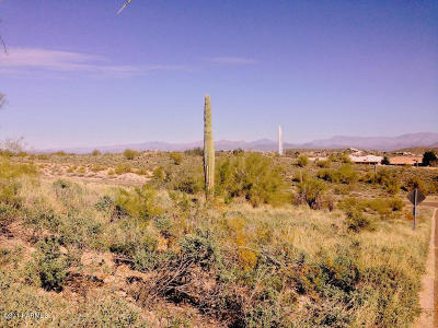 Fountain Hills Residential Lots & Land For Sale: 16710 E Hawk Drive