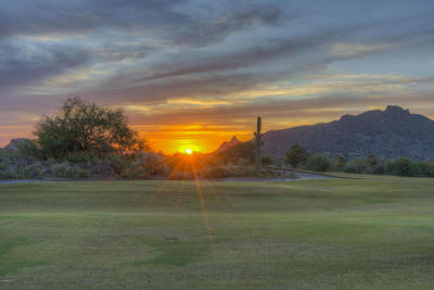 Carefree, Cave Creek Single Family Home For Sale: 3028 N Ironwood Court