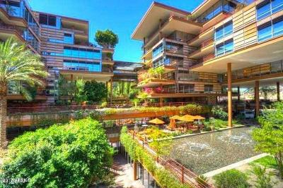 Scottsdale Apartment For Sale: 7157 E Rancho Vista Drive #5008