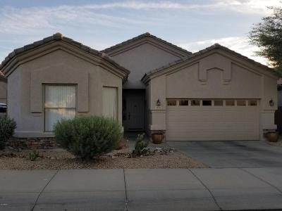 Phoenix Single Family Home For Sale: 6601 W Molly Lane