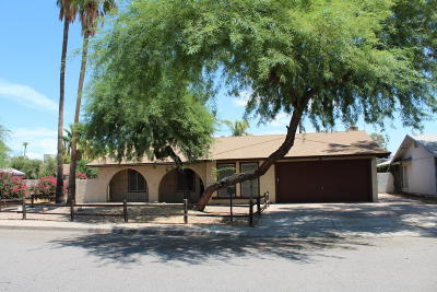 Chandler Single Family Home For Sale: 1028 N Evergreen Street