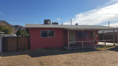 Phoenix AZ Single Family Home For Sale: $110,000
