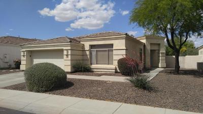 Phoenix Single Family Home For Sale: 2030 E Beautiful Lane