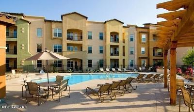 Surprise Rental For Rent: 14575 W Mountain View Boulevard #11202
