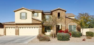 Single Family Home For Sale: 18424 W Desert Lane