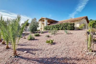 Fountain Hills Single Family Home For Sale: 14654 N Fountain Hills Boulevard