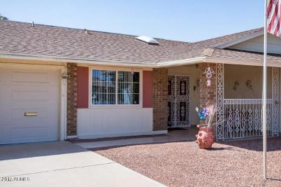 Sun City Rental For Rent: 10512 W Desert Forest Circle