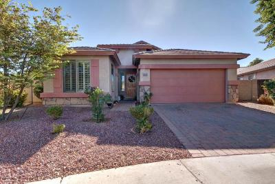 Tolleson Single Family Home For Sale: 10101 W Cordes Road