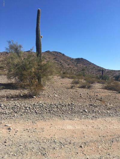 Goodyear Residential Lots & Land For Sale: Xxx S 138th Avenue S