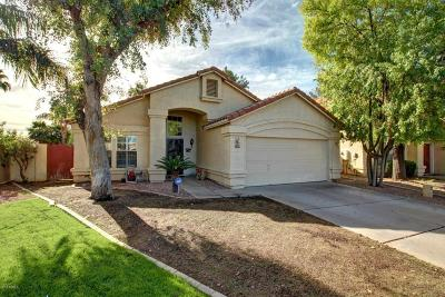 Gilbert Single Family Home For Sale: 2329 E Gondola Lane