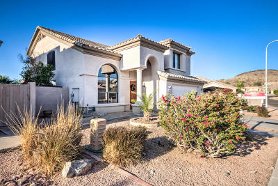Phoenix Single Family Home For Sale: 16802 S 2nd Place