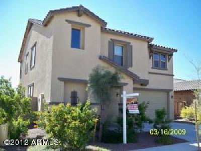 Rental For Rent: 25876 N 165th Lane