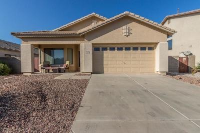 Surprise AZ Single Family Home For Sale: $239,900