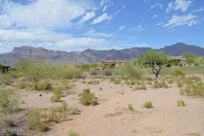 Gold Canyon AZ Residential Lots & Land For Sale: $245,000