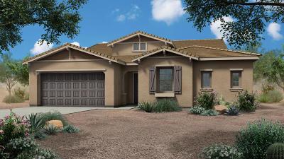 Phoenix Single Family Home For Sale: 1417 E Beth Drive