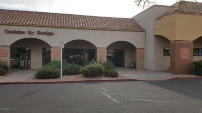 Scottsdale Commercial Lease For Lease: 8453 E McDonald Drive