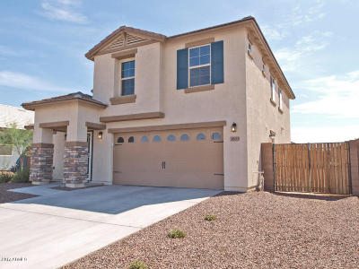 Goodyear Single Family Home For Sale: 3803 S 185th Lane