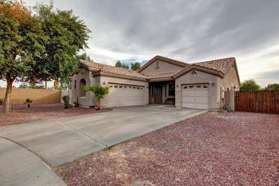 Litchfield Park Single Family Home For Sale: 6435 N Sierra Hermosa Court