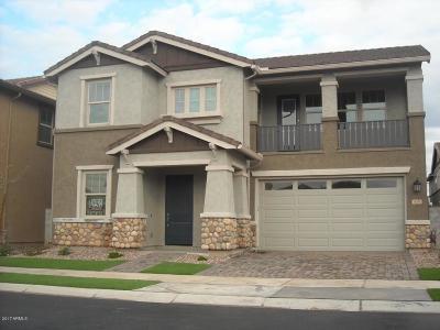 Gilbert Single Family Home For Sale: 3684 E Ebano Street