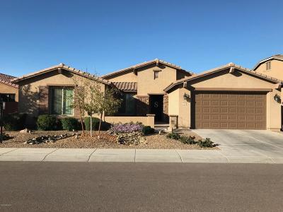 San Tan Valley Single Family Home For Sale: 1204 W Fever Tree Avenue