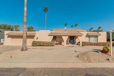Fountain Hills Single Family Home For Sale: 17012 E Jacklin Drive