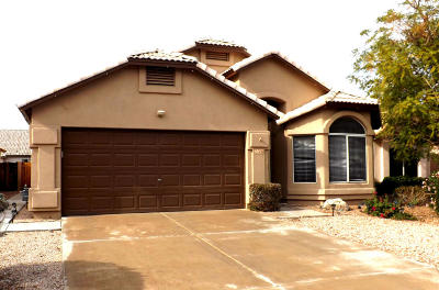 Tempe Single Family Home For Sale: 7176 S Parkside Drive