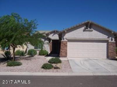 Peralta Trails Single Family Home For Sale: 9840 E Prospector Drive