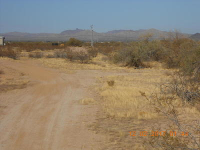 Wittmann AZ Residential Lots & Land For Sale: $120,000