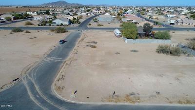 Arizona City Single Family Home For Sale: 11024 W Torren Drive
