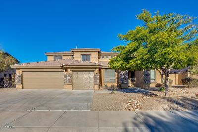 Goodyear Single Family Home For Sale: 17656 W Polaris Drive